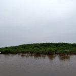 ramsar at xuan thuy national park